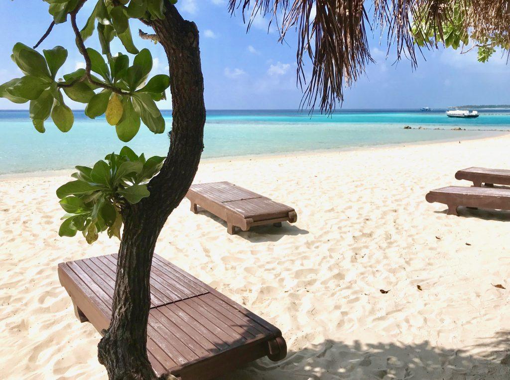 guest house maldive
